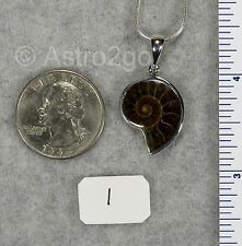 AMMONITE PENDANTS $29 Sterling Silver Fossil Jewelry by STARBORN CREATIONS NEW!