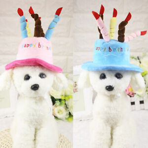 wumedy Pet Birthday Hat Dogs Cute Hat for Birthday Party Headwear