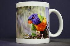 UNIQUE 350ml COFFEE MUG EMBEDDED WITH ORIGINAL PHOTOGRAPH: Rainbow Lorikeet