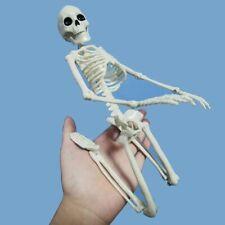 Skeleton Active Anatomy Human Model Medical Halloween Party Decor