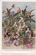 Vintage Postcard Art Work of Archduchess & Princess Maria Josepha of Austria