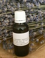 The BEST LAVENDER OIL 1oz 100% PURE Lavender ESSENTIAL OIL  FREE SHIP