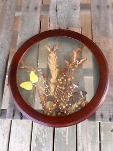 Vintage Brazilian Wall Art Butterflies Flowers Brazilia Collection Made Brazil