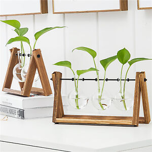Plant Terrarium Bulb Glass Vase w/ Wooden Stand for Propagating Hydroponic Plant