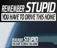 Remember Stupid Sticker Decal 4x4 Drift Diesel Car Ute 4wd Funny MX Send It