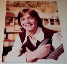 DAVID CASSIDY / THE PARTRIDGE FAMILY /  8 x 10  COLOR  PHOTO