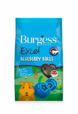 Burgess Excel Blueberry Treats 80g (pack of 6)