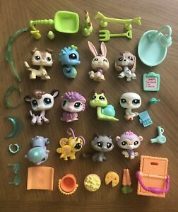 Authentic Littlest Pet Shop 13 Vacation Pets #2207-#2219  (#2210 Collie Dog)