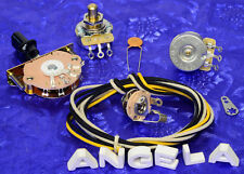 Angela Instruments Basic 3 Way Wiring Kit For Telecaster With CTS 450G Pots New