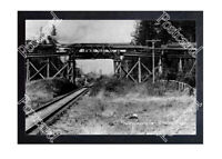 HISTORIC C.C.MASTER LOGGING Co. St HELENS OREGON TRAIN POSTCARD
