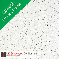 Suspended Ceiling Tiles For Office Shop 595x595mm 10 Per Box White With Speckle
