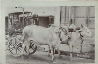 India Native Men Bullock Cart c1910 Real Photo Postcard dcn