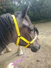 "Bright Yellow. Full size ""Westernway"" Field Safe Head collar."