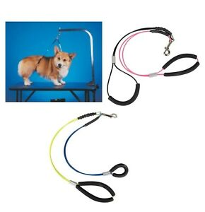 No Sit Haunch Holder for Dogs & Pet Keeps them standing in comfort Quality S - L