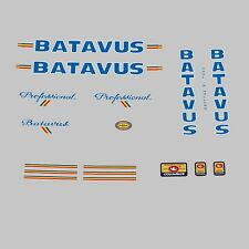 Batavus Professional Bicycle Decals, Transfers, Stickers n.100