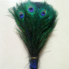 Wholesale 10-1000pcs Peacock feathers eye 10-12 inches / 25-30 cm Royal blue