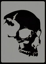 EVERYTHING AIRBRUSH STENCILS - SKULL HEAD - STENCIL 6