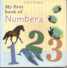 MY FIRST BOOK OF NUMBERS Board Book Childrens by Garry Fleming 1 2 3 ONE TWO
