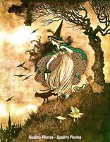 "Witch in Woods with Cat 8.5x11"" Photo Print Ida Rentoul Othwaite Fantasy Artwork"
