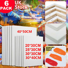 6 Pack Blank Artist Canvas Art Board Plain Painting Stretched Framed 40x50CM UK
