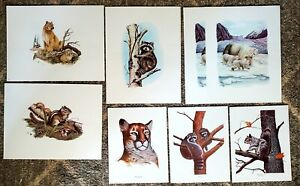 1974 to 76 AL DORNISCH THOMAS L. KRONEN Wildlife Print Lot  LE Signed And More.