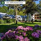 München 3 Tage Bogenhausen Städte-Reise Parkhotel Rothof Gutschein 4 Sterne