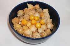 ORGANIC VEGETABLE TOMATILLO PINEAPPLE PHYSALIS IXOCARPA 40 FINEST SEEDS