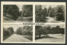 Nunspeet - Veluwe