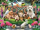 Pets In The Park 500 Piece Jigsaw Puzzle By SunsOut For Sale