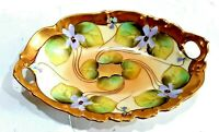 EXCEPTIONAL HAND PAINTED VIOLETS T&V LIMOGES FRANCE VENICE 1896 PICKARD DISH