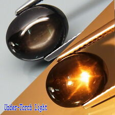 4.26Ct.Perfect Sharp 6 Rays Natural Golden Black Star Sapphire Thailand