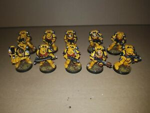 Warhammer 40k Space Marines Taktischer Trupp/Tactical Squad Pro Painted