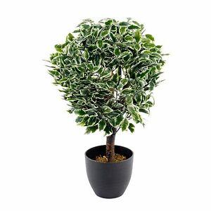 Realistic Foliage Artificial Medium 65cm Variegated Ficus Ball Plant + Pot New