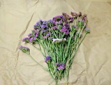Purple Statice - Large Bunch 30 stems