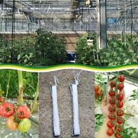 30 Stück 10m Tomatenhaken J Traktionsseil Haken Gemüse Pflanzzubehör