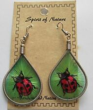 Earrings  Spirit of Nature thread ladybug-black and red--green background
