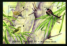 JERSEY 1435, 2010 BIRDLIFE IV, S/S OF 3, MNH (JER086)