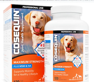 COSEQUIN Plus MSM & HA For Dogs 120 Tasty Chewable Tablets EXP  2023  Free Ship
