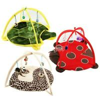 Pet Cat Play Bed Tent Playing Toy Exercise Foldable Kitten Pad Mat Bells House