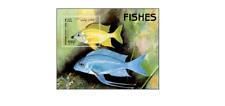 AFG98061 Fish exotic block