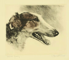 Kurt Meyer-Eberhardt Radierung Barsoi borzoi sighthound echting e