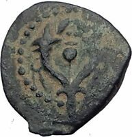 Jewish King ALEXANDER JANNAEUS Ancient Jerusalem WIDOW's MITE Bible Coin i64191
