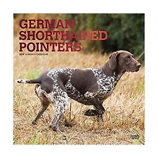 German Shorthaired Pointers 2019 12 x 12 Inch Monthly Square Wall Calendar wi.