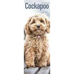 Cockapoo Calendar 2022 Dog Slimline SLIM 15% OFF MULTI ORDERS!