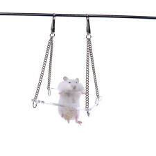 New Acrylic Rat Parrot Hamster Toy Hanging Swing Funny Exercise Natural