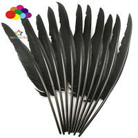 10-100 pcs Black 14-16inch Plumes Turkey Pointers Quill Feather Decorations
