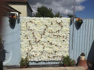 Artificial Flower Wall Backdrop (6ft x 5ft 3) + 4 additional panels