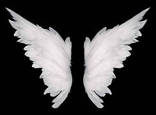 STUNNING ANGEL WINGS ABSTRACT CANVAS #382 QUALITY FRAMED WALL ART A1