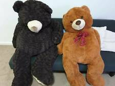 Extra Large Plush Teddy Bears