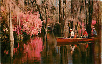 Postcard Cypress Gardens, Charleston, SC
